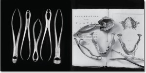 """""""Bones, Books, and Bell Jars,"""" an exibit from the Müller Museum, showcases photographer Andrea Baldeck '72's work, which explores the intersection of art and medicine throughout history. Photo By: Andrea Baldeck"""