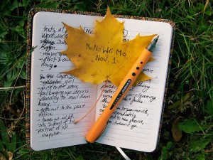 Some Vassar students participate in the National Novel Writing Month in November, in which on they attempt to write 50,000 words. While they are not always successful, authors value the experience. Photo By: NaNoWriMo Foundation