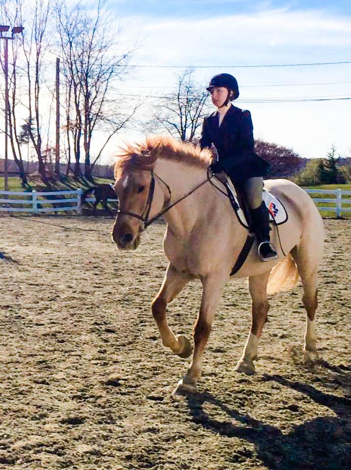 Equestrian Club | Taylor University